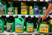 Così Monsanto, la multinazionale tedesca dei pesticidi ha messo ko l'Europa dei consumatori. E il glifosato va…