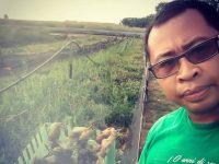 Iwan, l'ex manager diventato allevatore di lumache in un paesino di 100 abitanti (foto)