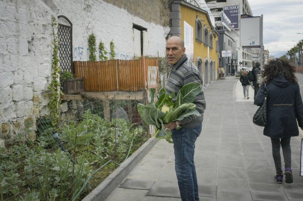 Mustafa orto Napoli