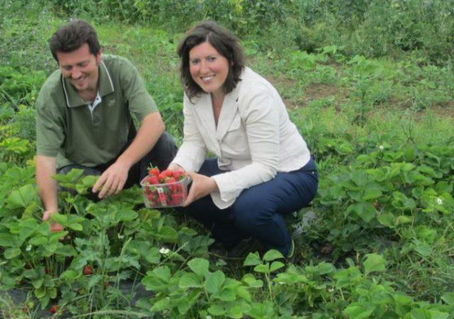 In Abruzzo l'azienda agricola dove gli ortaggi crescono al ritmo della musica di Mozart