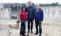 Zero cani in canile, a Foggia ci sono riusciti. E se provassimo in tutta Italia?