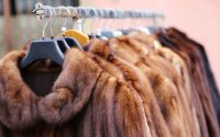 Basta pellicce, finalmente si svegliano i grandi stilisti della moda.  E le eliminano dalle collezioni