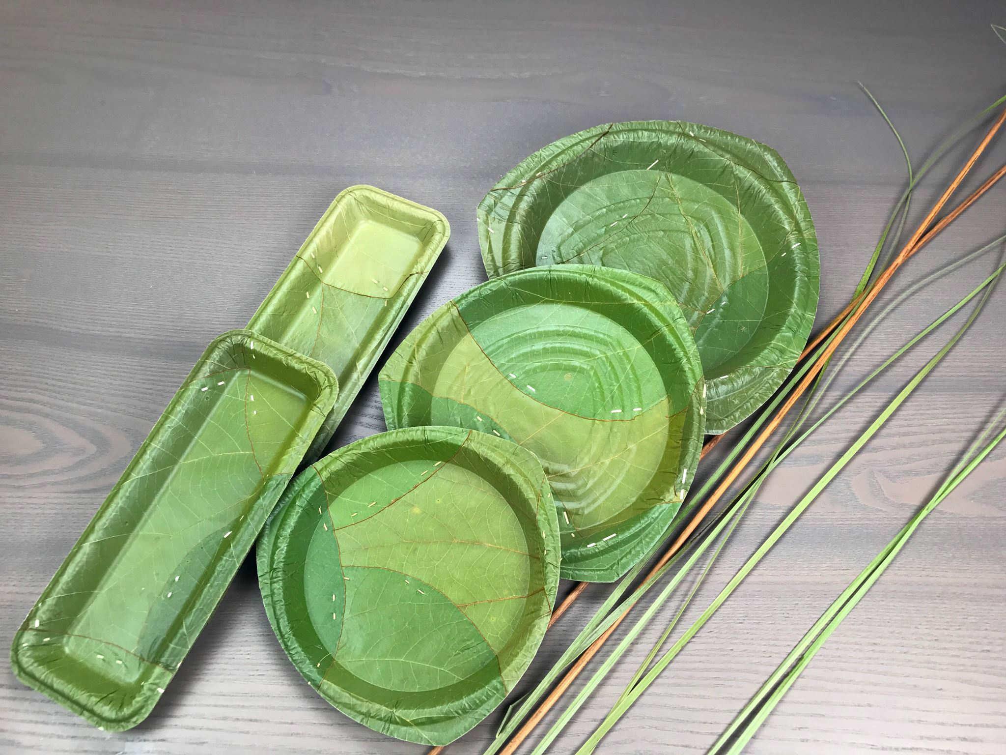 stoviglie biodegradabili