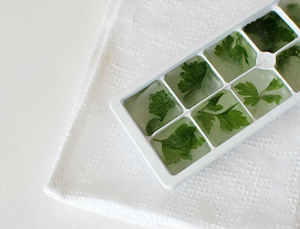 come congelare erbe aromatiche fresche