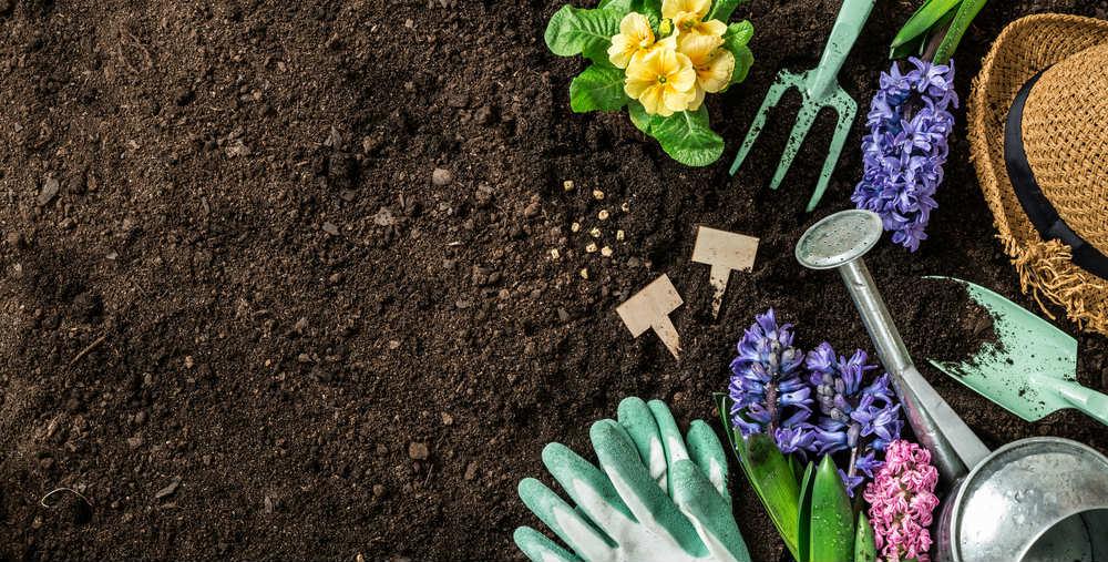 come migliorare terreno argilloso