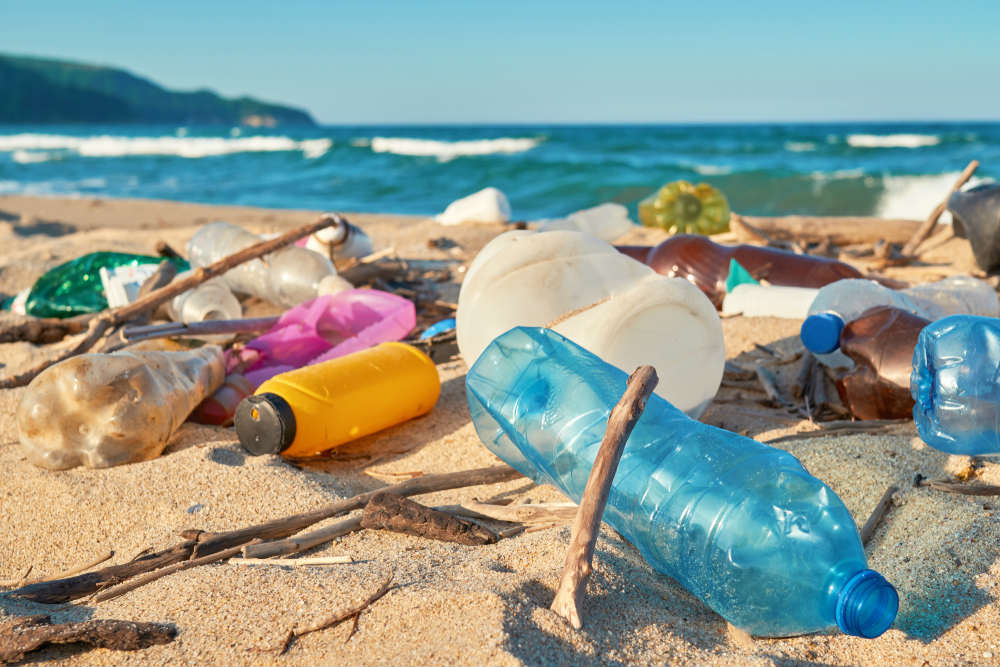 legge anti plastica