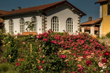 migliori orti botanici in italia