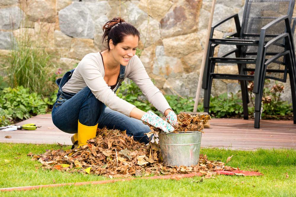 come preparare il giardino all'inverno