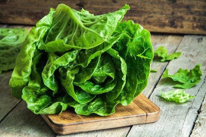benefici della lattuga
