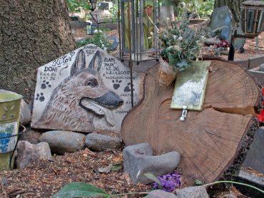 cimiteri per animali domestici