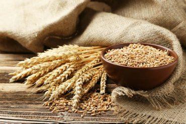 proprietà del grano tenero