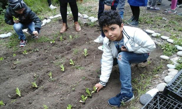 A scuola di risparmio: a pochi chilometri da Catania si insegna come diventare paladini della Terra