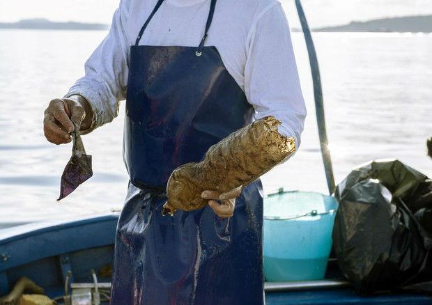 pescatori contro l'inquinamento