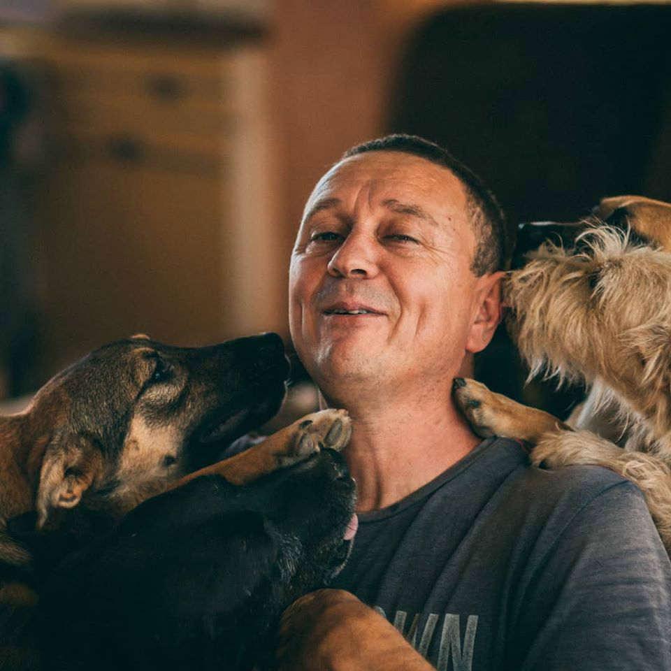 rifugio cani abbandonati