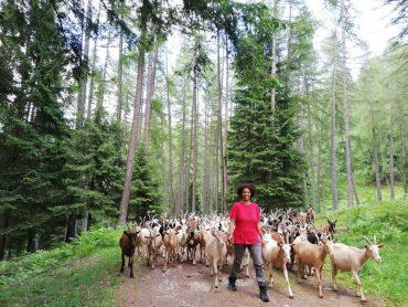 ragazza che alleva capre