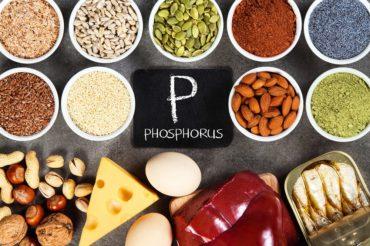 Cibi ricchi di fosforo
