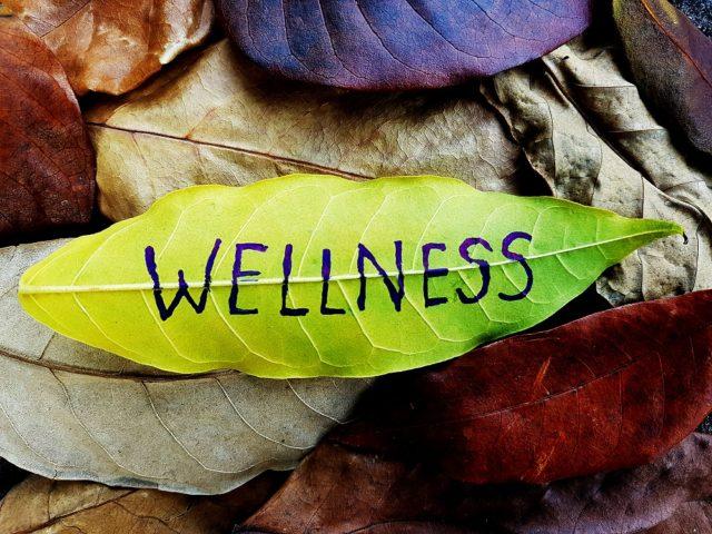 Vitamina E e salute