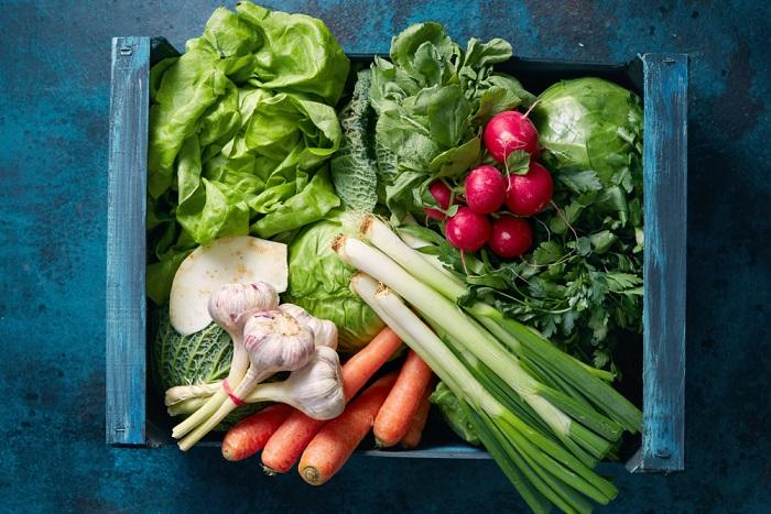 orto con gli scarti delle verdure
