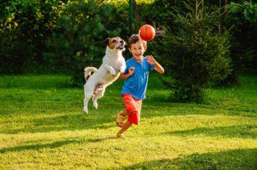 Convivenza animali e bambini: benefici