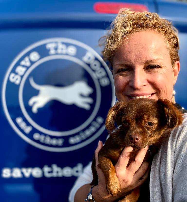 da pubblicitaria a salvatrice di cani