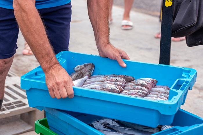 ri pescato