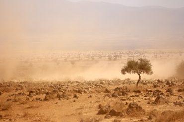 migrazioni causate dai cambiamenti climatici (1)