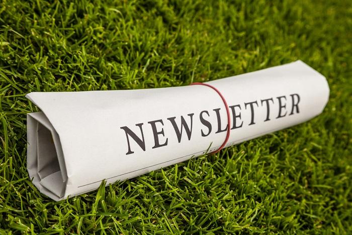 Nasce la Newsletter della comunità Non sprecare. Due volte alla settimana consigli e notizie