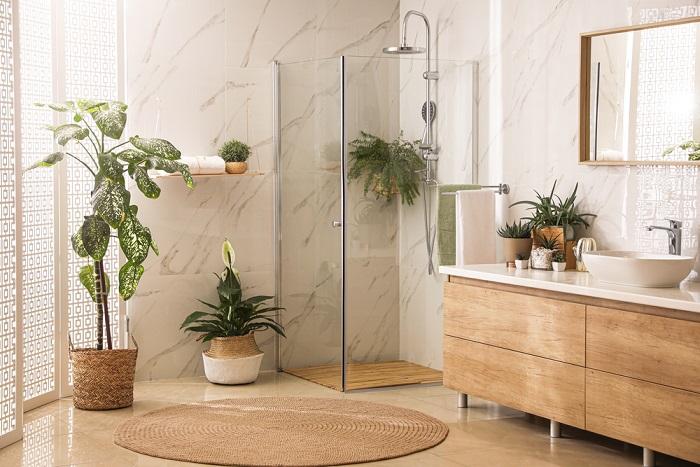 piante per arredare il bagno