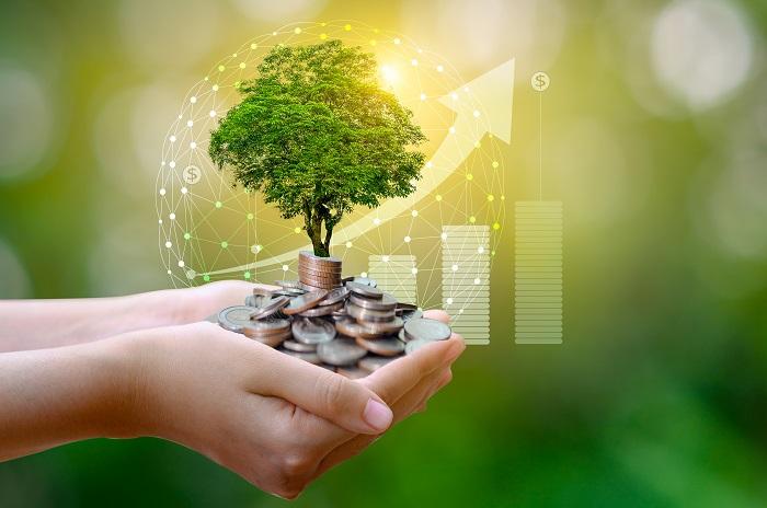 Valore di un albero