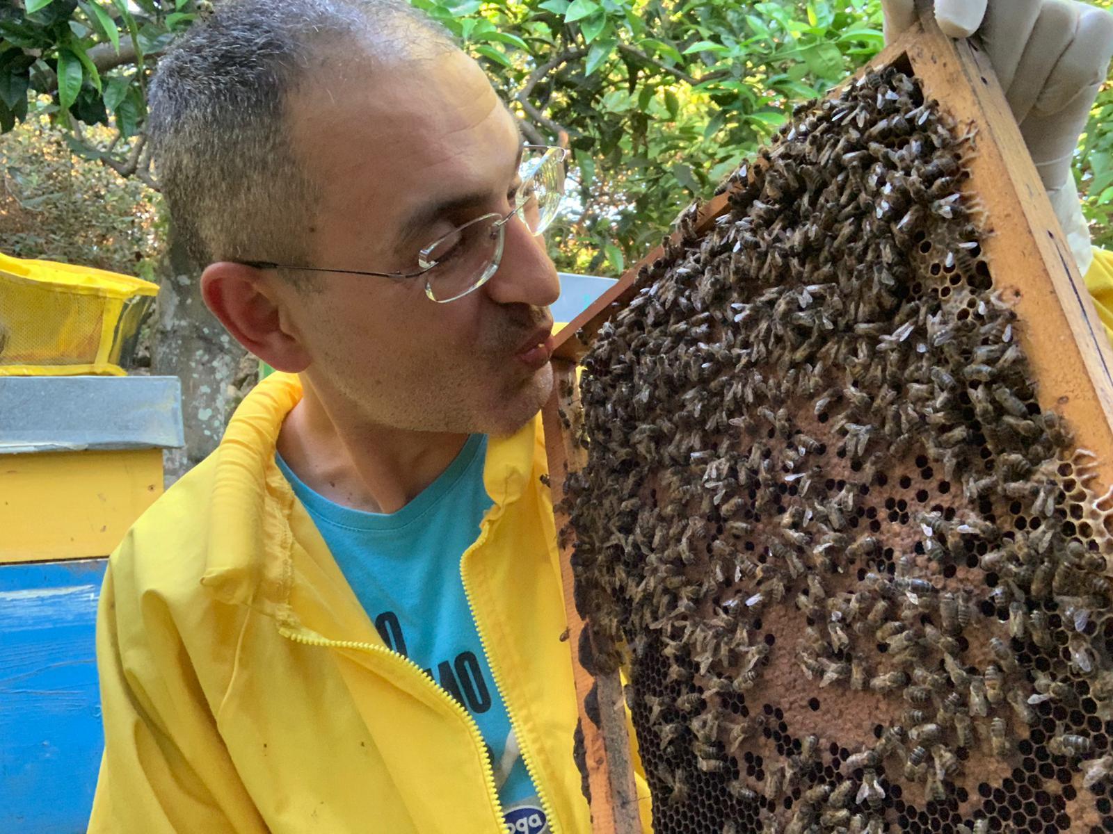 Andrea cura la sclerosi multipla con il veleno d'api. Rimedio efficace per tremori e crampi