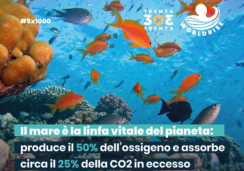 Come proteggere il mare: la rete di Worldrise punta al 30 per cento di Aree Marine Protette